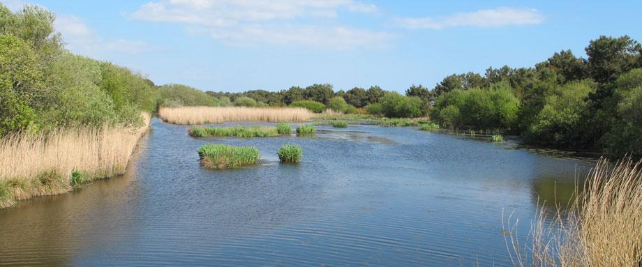 Mousterlin nature area - Natura 2000 label