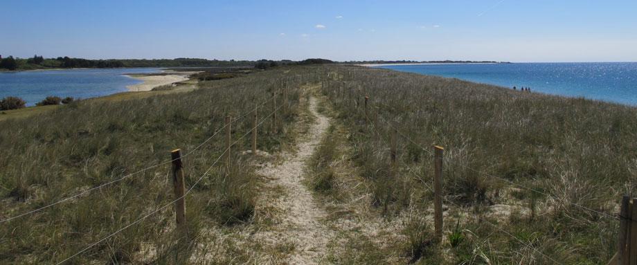 Longue Balade entre Mer Blanche et Ocean sur la dune de sable blanc et la mer turquoise.