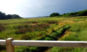 Le pont de kerler marée basse