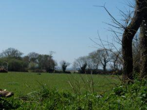 Des champs entre les penty et la mer